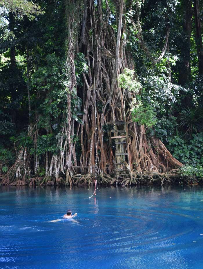Nager dans le Matevulu blue hole