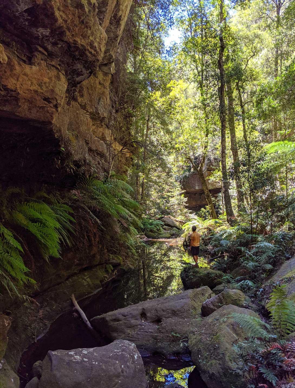 Canyon avec rivière le long de la randonnée dans les Blue Mountains