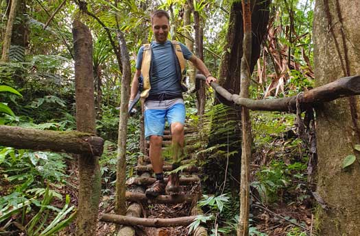 Chemins et échelles en bois au coeur de la forêt d'Espiritu Santo