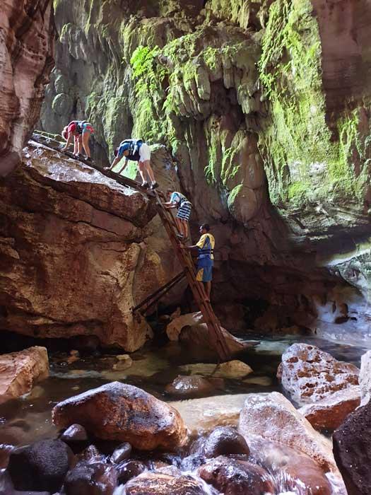 Descente dans la grotte Millenium Cave par des échelles en bambou