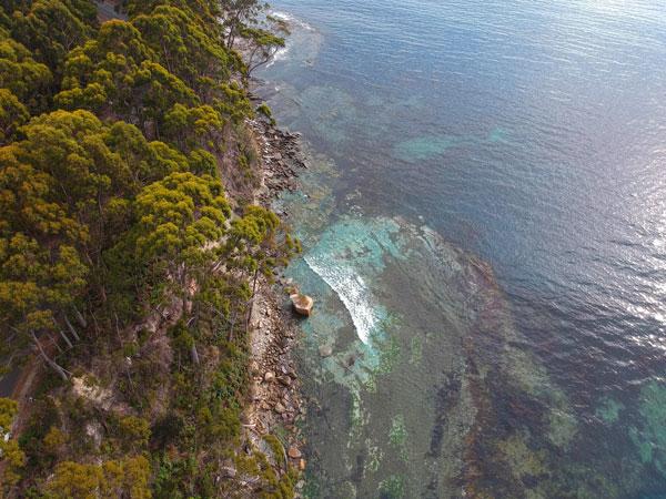 Rochers et plage de Bakers Beach à Bruny Island