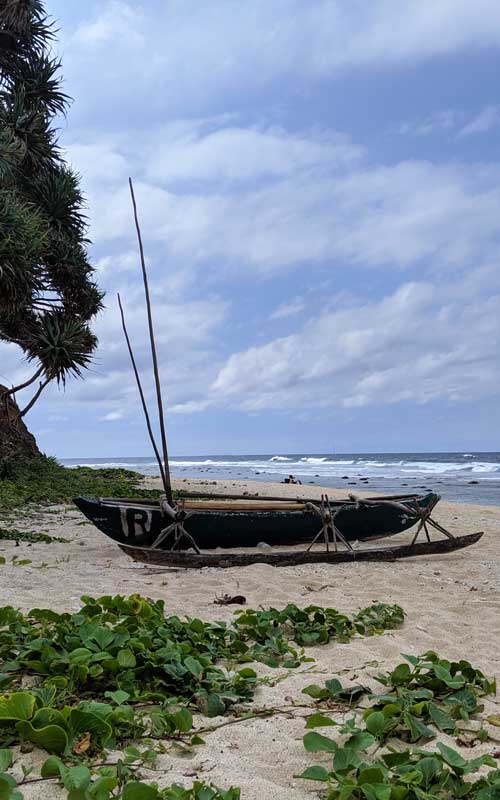 Pirogue traditionnelle sur la plage de Port Resolution