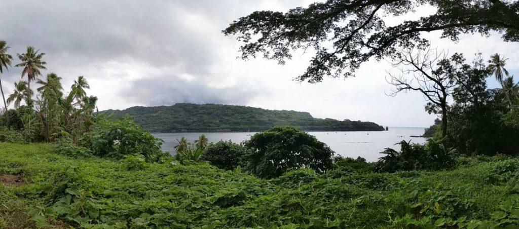 Route et végétation sur l'île de Tanna au Vanuatu