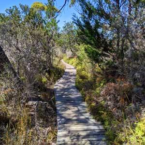 Randonnée au coeur du Freycinet National Park