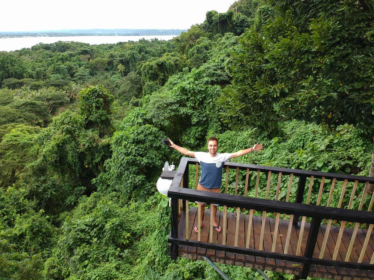 La forêt tropicale depuis les hauteurs de la Freshwater Plantation