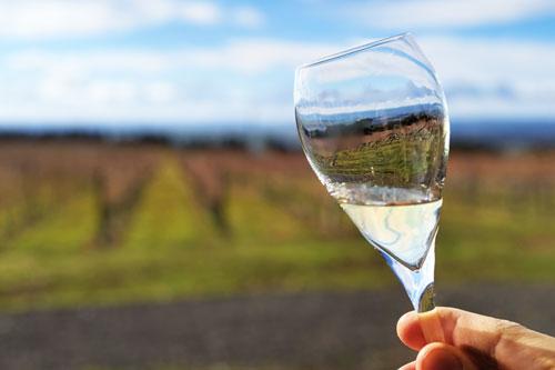 Dégustation de vin dans la région d'Orange, Nouvelle Galle du Sud