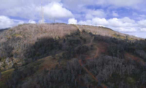 Le Mount Canoblas vu d'en bas