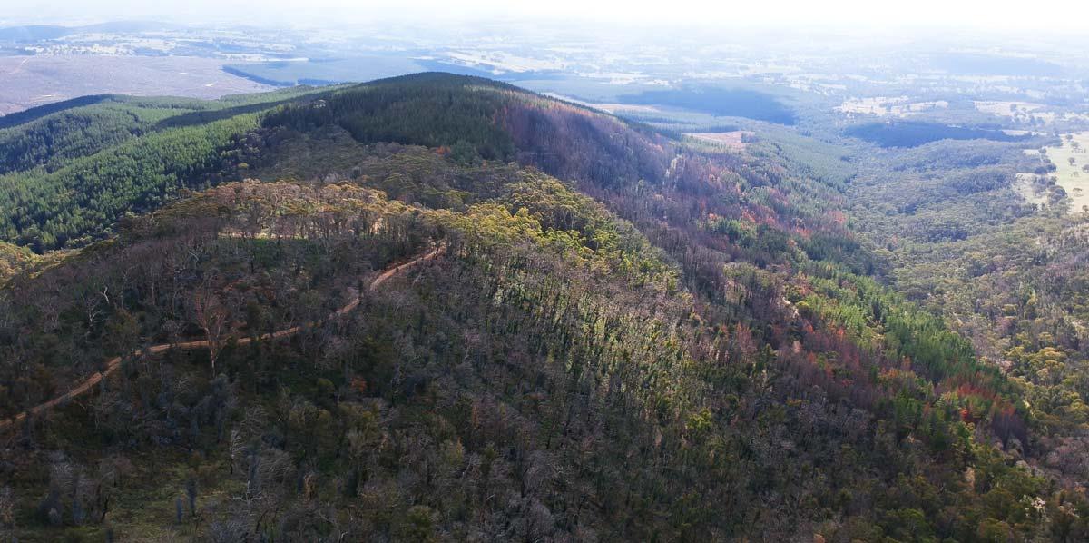 Vue aérienne de la vallée d'Orange dans la Nouvelle Galle du Sud