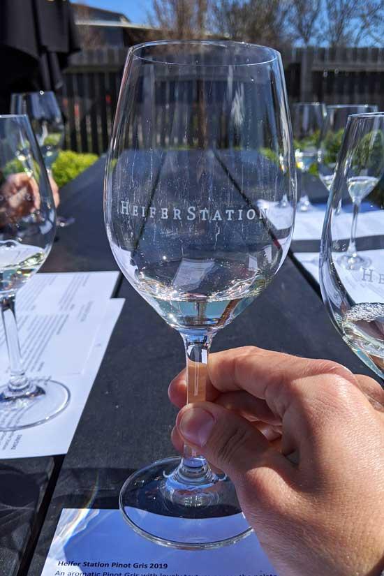 Dégustation de vin blanc à Heifer Station