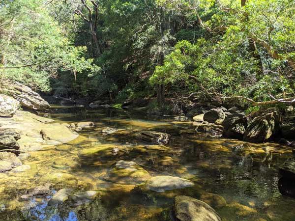Sam's Creek après avoir descendu le chemin depuis la station de train de Berowra