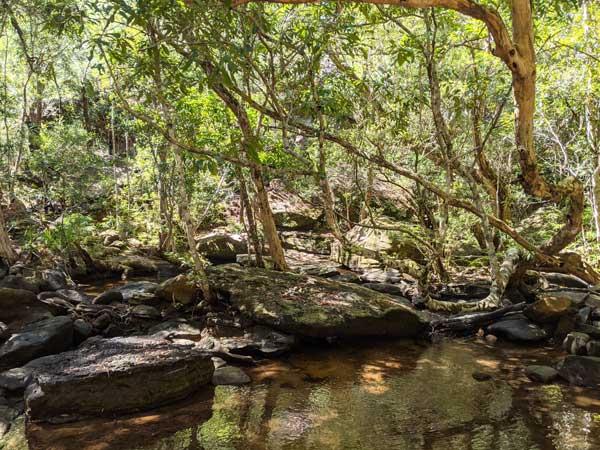 Traversée de Sam's Creek au début de la randonnée vers Crosslands Reserve