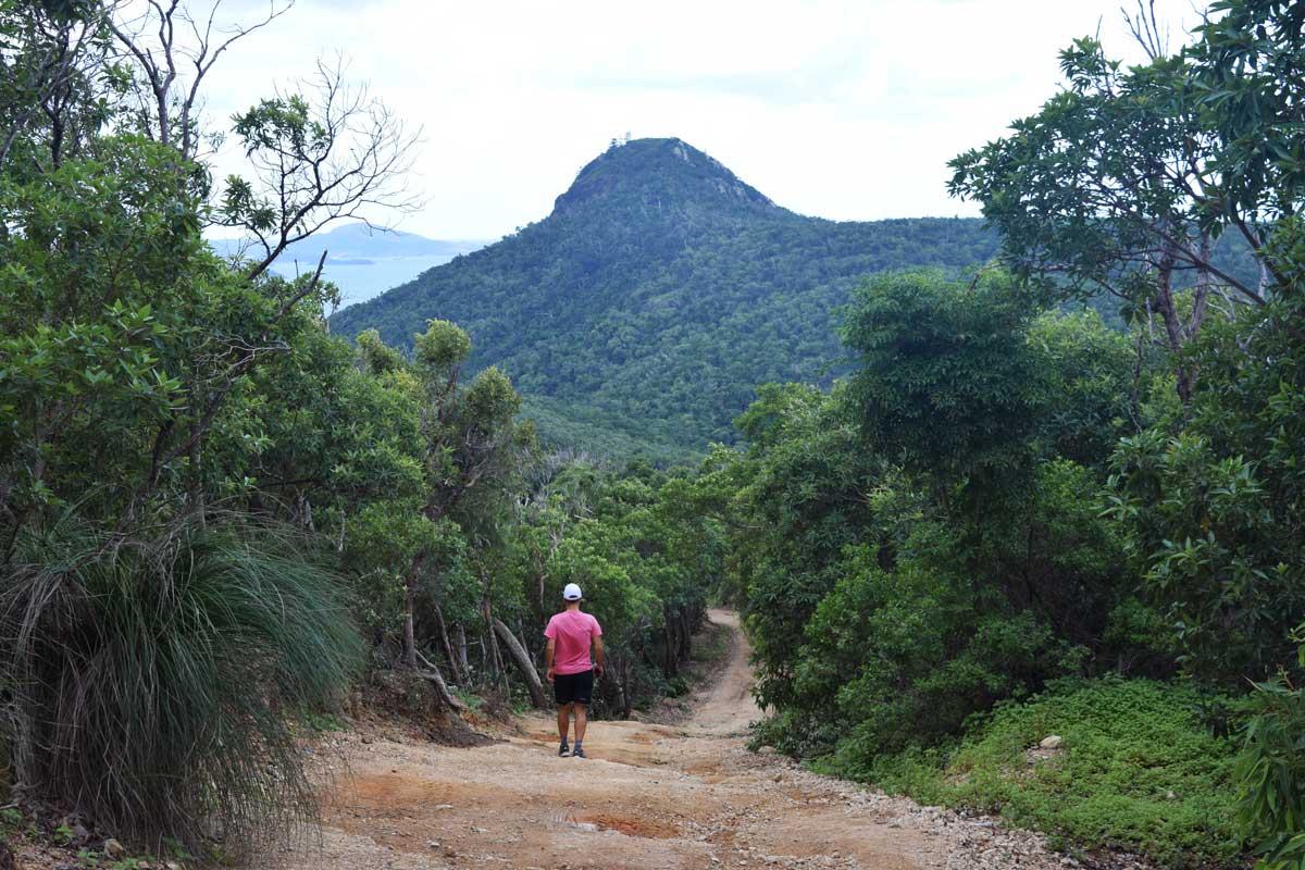 Chemin de randonnée menant au Resort Lookout avec Passage Peak en arrière plan