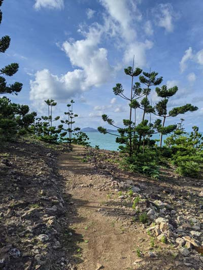 Chemin côtier sur Hamilton Island