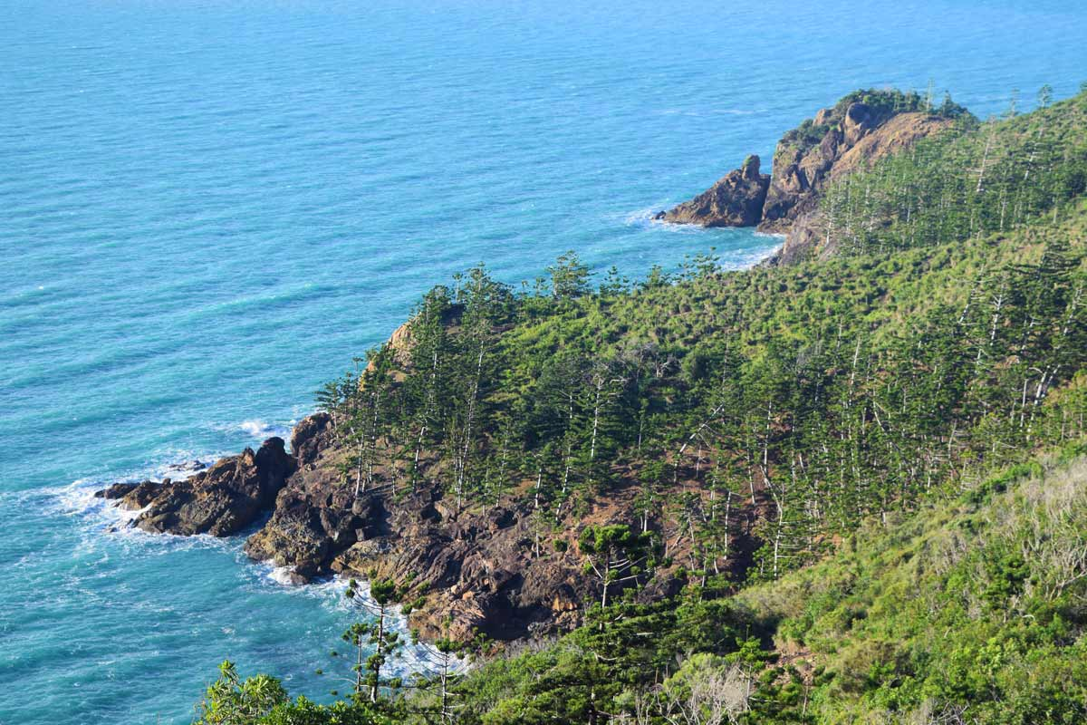 Falaise et forêt en bord de mer sur Hamilton Island