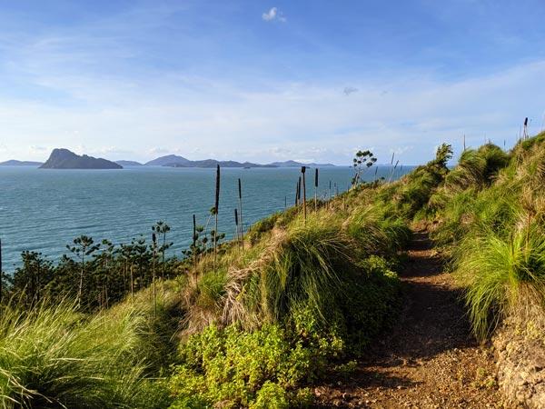 Chemin en haut des falaises et menant à South East Head