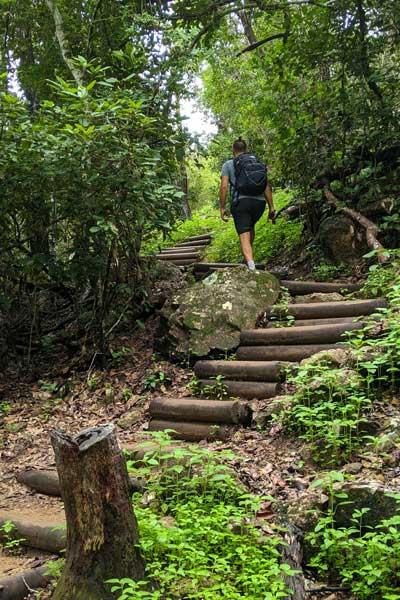 Montée des marches infinies jusqu'au sommet de Hamilton Island
